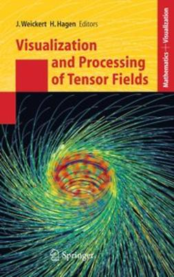Hagen, Hans - Visualization and Processing of Tensor Fields, ebook