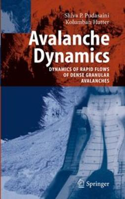 Hutter, Kolumban - Avalanche Dynamics, ebook