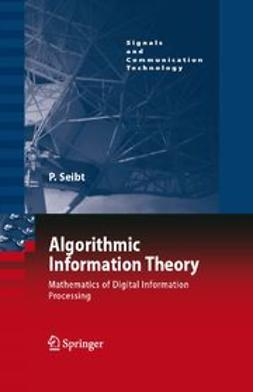 Seibt, Peter - Algorithmic Information Theory, e-kirja