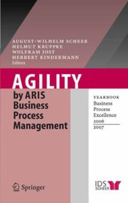 Jost, Wolfram - AGILITY by ARIS Business Process Management, ebook