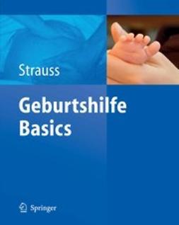 Strauss, Alexander - Geburtshilfe Basics, ebook