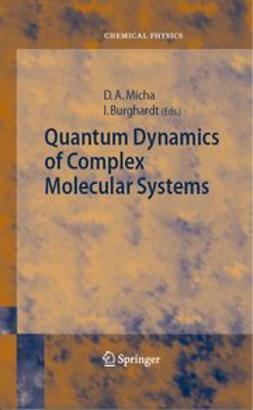 Burghardt, Irene - Quantum Dynamics of Complex Molecular Systems, ebook
