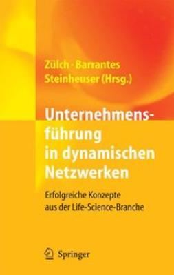 Barrantes, Luis - Unternehmensführung in dynamischen Netzwerken, ebook