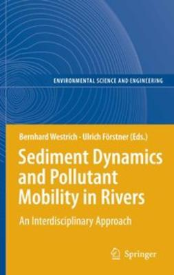 Förstner, Ulrich - Sediment Dynamics and Pollutant Mobility in Rivers, ebook