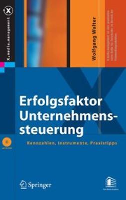 Walter, Wolfgang - Erfolgsfaktor Unternehmenssteuerung, ebook