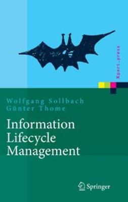 Sollbach, Wolfgang - Information Lifecycle Management, ebook