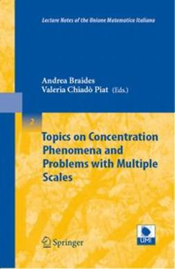 Braides, Andrea - Topics on Concentration Phenomena and Problems with Multiple Scales, ebook