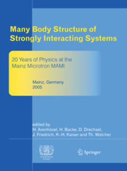 Arenhövel, Hartmuth - Many Body Structure of Strongly Interacting Systems, ebook