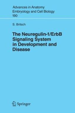 Britsch, Stefan - The Neuregulin-I/ErbB Signaling System in Development and Disease, e-bok