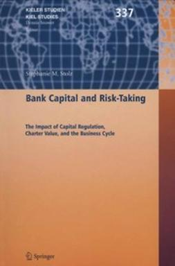 Stolz, Stéphanie M. - Bank Capital and Risk-Taking, ebook