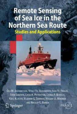 Alexandrov, Vitaly Yu. - Remote Sensing of Sea Ice in the Northern Sea Route, ebook