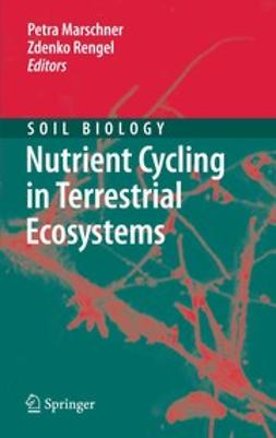 Marschner, Petra - Nutrient Cycling in Terrestrial Ecosystems, ebook