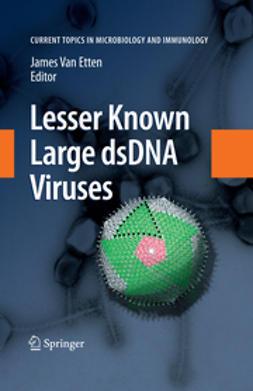 Lesser Known Large dsDNA Viruses