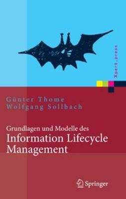 Sollbach, Wolfgang - Grundlagen und Modelle des Information Lifecycle Management, e-bok
