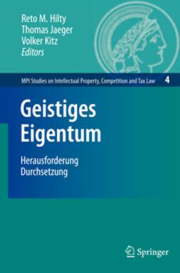 Hilty, Reto M. - Geistiges Eigentum, e-kirja
