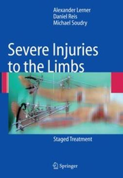Lerner, Alexander - Severe Injuries to the Limbs, ebook
