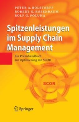 Bolstorff, Peter A. - Spitzenleistungen im Supply Chain Management, ebook