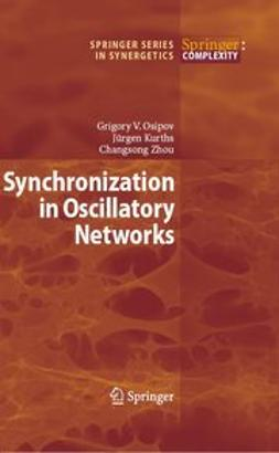 Kurths, Jürgen - Synchronization in Oscillatory Networks, e-bok