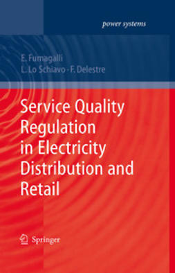 Delestre, Florence - Service Quality Regulation in Electricity Distribution and Retail, ebook