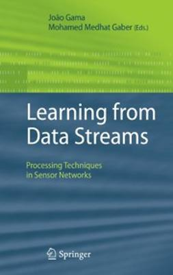 Gaber, Mohamed Medhat - Learning from Data Streams, ebook
