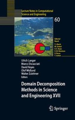 Discacciati, Marco - Domain Decomposition Methods in Science and Engineering XVII, ebook