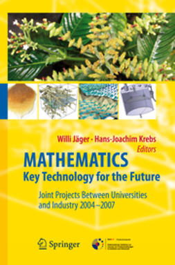 Jäger, Willi - Mathematics – Key Technology for the Future, e-kirja