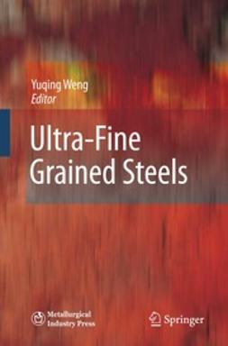 Weng, Yuqing - Ultra-Fine Grained Steels, ebook