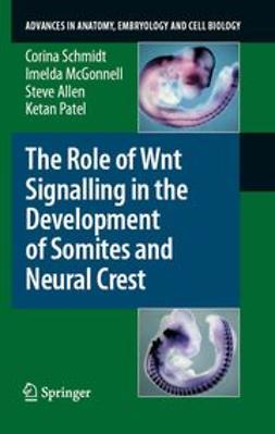 Schmidt, Corina - The Role of Wnt Signalling in the Development of Somites and Neural Crest, ebook