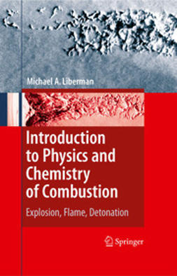 Liberman, Michael A. - Introduction to Physics and Chemistry of Combustion, e-kirja