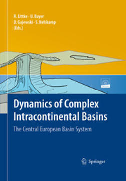Dynamics of Complex Intracontinental Basins