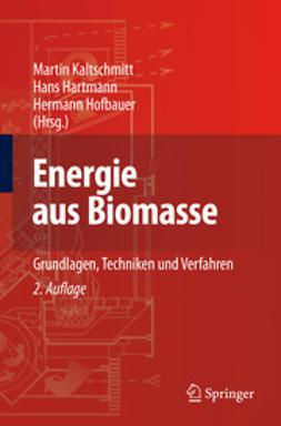 Kaltschmitt, Martin - Energie aus Biomasse, ebook