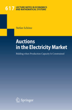 Schöne, Stefan - Auctions in the Electricity Market, ebook