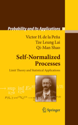 Self-Normalized Processes