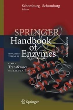 Schomburg, Dietmar - Class 2 Transferases, ebook