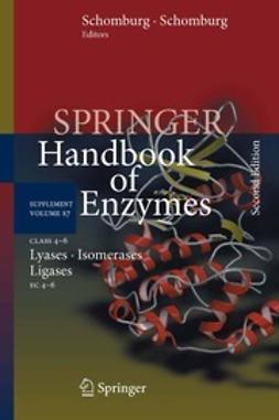 Schomburg, Dietmar - Class 4–6 Lyases, Isomerases, Ligases, ebook