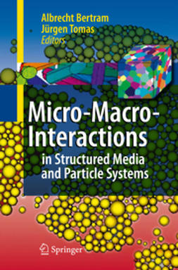 Bertram, Albrecht - Micro-Macro-interaction, ebook