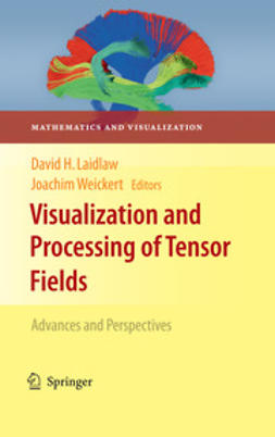 Laidlaw, David - Visualization and Processing of Tensor Fields, ebook