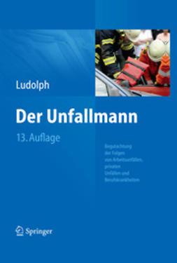 Ludolph, Elmar - Der Unfallmann, ebook