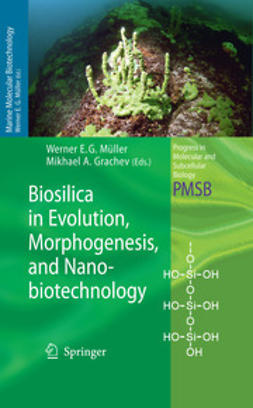 Müller, Werner E. G. - Biosilica in Evolution, Morphogenesis, and Nanobiotechnology, e-bok