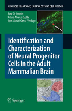 Garcia-Verdugo, Jose Manuel - Identification and Characterization of Neural Progenitor Cells in the Adult Mammalian Brain, ebook