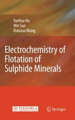 Hu, Yuehua - Electrochemistry of Flotation of Sulphide Minerals, ebook