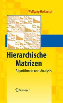 Hackbusch, Wolfgang - Hierarchische Matrizen, ebook