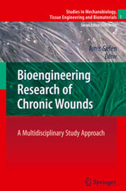 Gefen, Amit - Bioengineering Research of Chronic Wounds, ebook