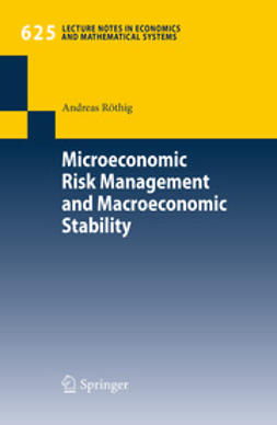 Röthig, Andreas - Microeconomic Risk Management and Macroeconomic Stability, ebook