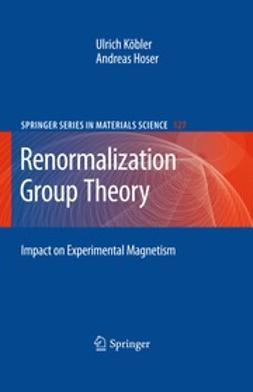 Köbler, Ulrich - Renormalization Group Theory, ebook