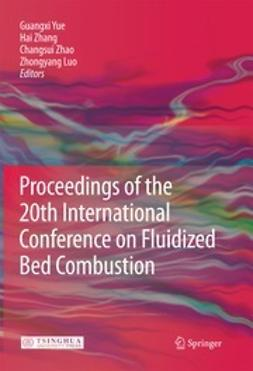 Yue, Guangxi - Proceedings of the 20th International Conference on Fluidized Bed Combustion, ebook