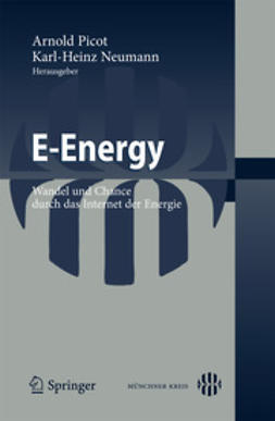 Picot, Arnold - E-Energy, ebook