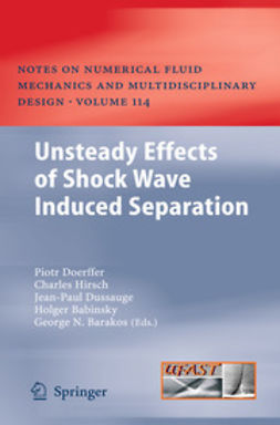 Doerffer, Piotr - Unsteady Effects of Shock Wave Induced Separation, ebook