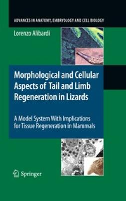 Alibardi, Lorenzo - Morphological and Cellular Aspects of Tail and Limb Regeneration in Lizards, ebook