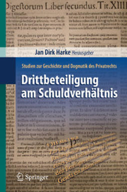 Harke, Jan Dirk - Drittbeteiligung am Schuldverhältnis, ebook